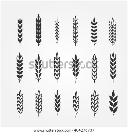 Wheat ears for logo design - stock vector
