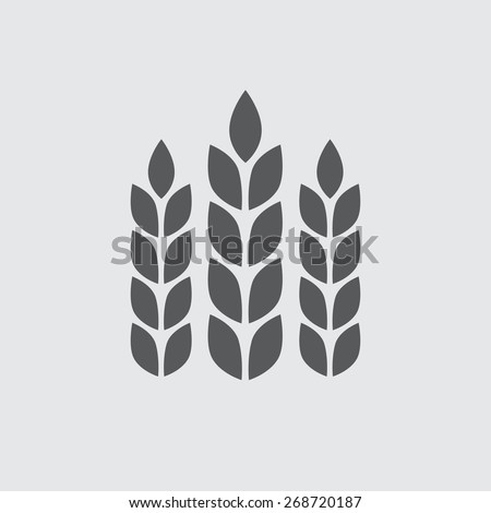 Wheat ears or rice icon. Agricultural symbol. Design elements for bread packaging or beer label. Vector illustration. - stock vector
