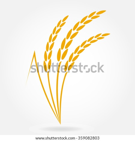 Wheat ears or rice icon. Design elements for bread packaging or beer label. Agricultural wheat and rice symbol. Vector illustration. - stock vector