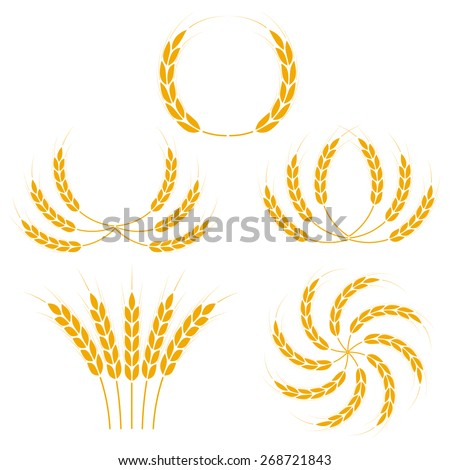 Wheat ears or rice icons set. Agricultural symbols isolated on white background. Design elements for bread packaging or beer label. Vector illustration. - stock vector