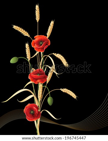 Wheat ears sheaf with red poppy flowers on black background. - stock vector