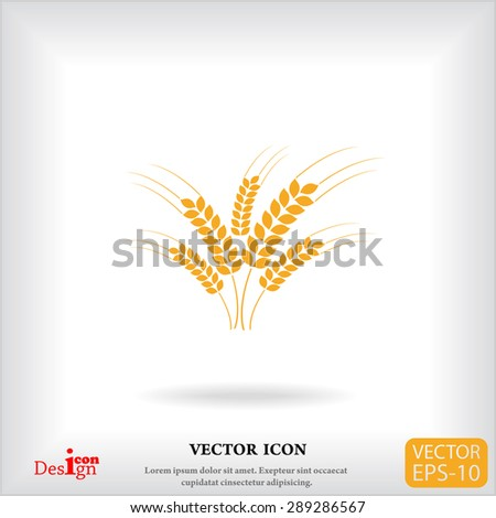 wheat ears vector icon - stock vector