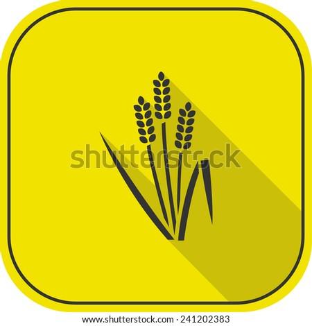 wheat icon. vector illustration - stock vector