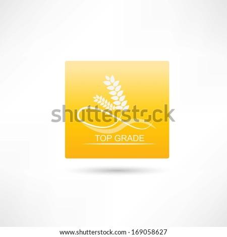 wheat premium icon - stock vector