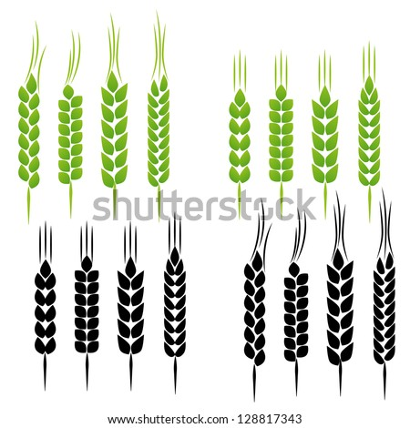 Wheat set - stock vector