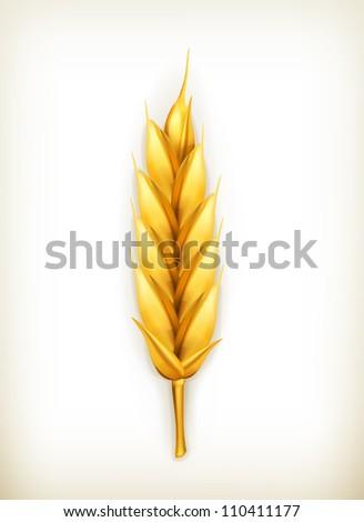 Wheat, vector icon - stock vector