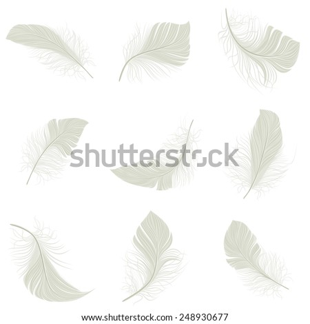 White bird wing feather decorative icons set isolated vector illustration - stock vector