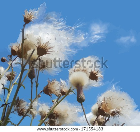 White fuzzy wild flowers with flying seeds on blue sky background - stock vector
