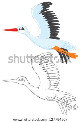 White stork flying - stock vector