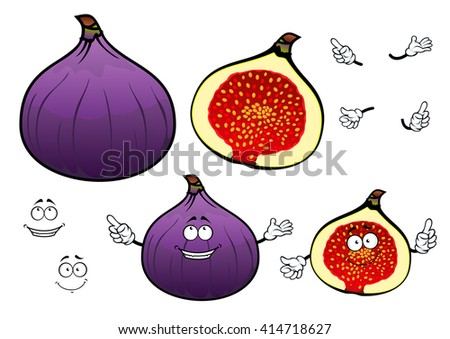 Whole and half of honey sweet fig fruit cartoon characters with cheerful smiling faces. Great for confectionery recipe, vegetarian dessert, agriculture design  - stock vector