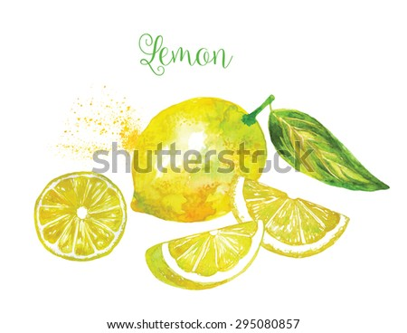 Whole Lemon and his Sliced Segments Isolated on White Background. Watercolor Vector Illustration. ( Each Sliced Segment is Isolated ). - stock vector