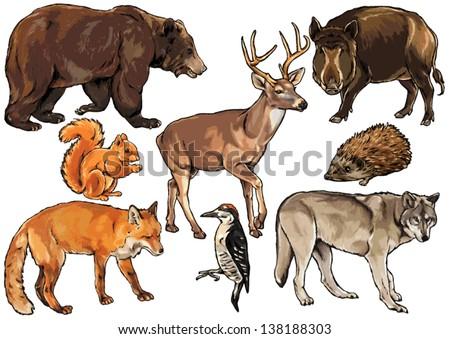 Herbivore animals clipart - photo#20