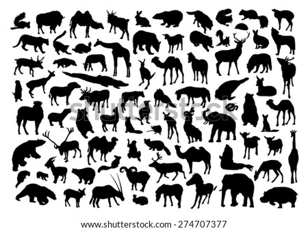 Wild animals set - stock vector