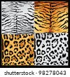 Wild animals skin textures - stock vector