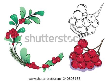 Wild berries - stock vector