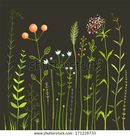 Wild Flowers and Grass Field on Black Collection. Rustic colorful meadow growth illustration set. Vector EPS10. - stock vector