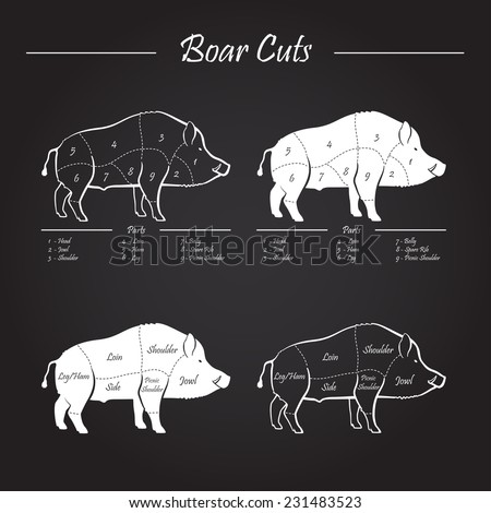 Wild hog, boar game meat cut diagram scheme - elements set on chalkboard - stock vector