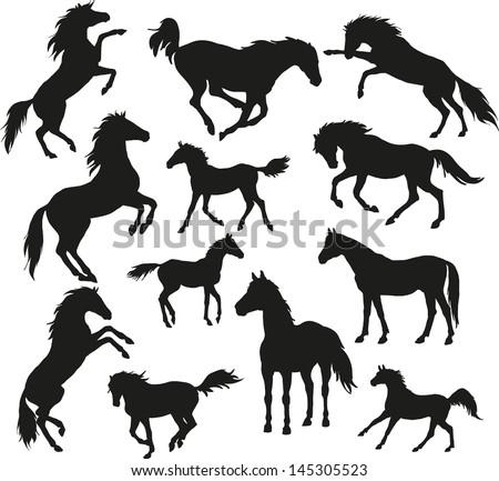 wild horses - stock vector