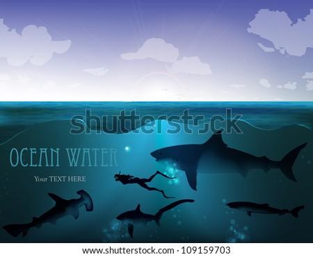 wild underwater world. shark with a diver under water - stock vector