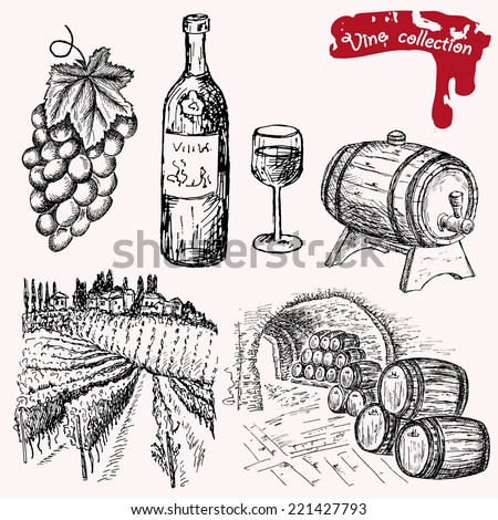 wine collection. hand drawing set of vector sketches - stock vector