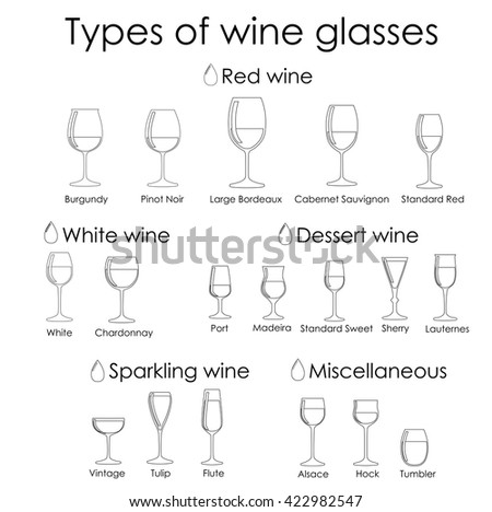 Wine glass set or classification collection isolated on white. Vector illustration.Ink liner outline - stock vector