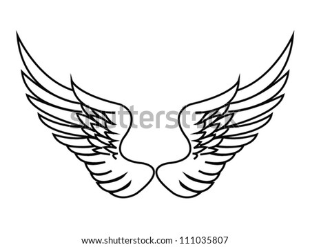 Wings on white - stock vector
