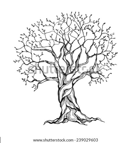Winter tree in a stylized style. Black and white colors. Isolated on white background. Vector illustration. - stock vector