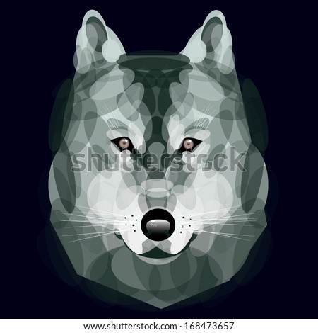 wolf eyes, Vector, wolf head, illustration, abstract, animal style, Geometric wolf's face, Graphic wolf head front view, zoo, nature, Good illustration for circus - stock vector