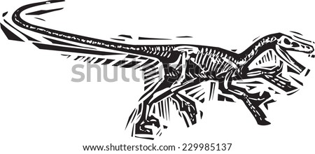 Woodcut style image of a fossil of a running Velociraptor dinosaur - stock vector
