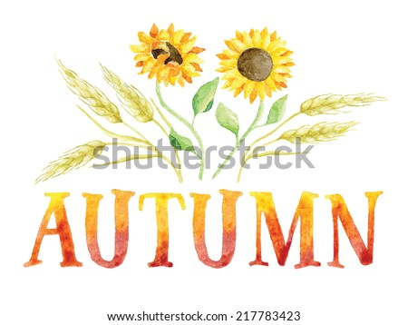Word AUTUMN painted with red and orange watercolor with ears of wheat and sunflowers. Vectorized watercolor painting.  - stock vector
