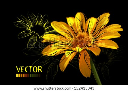 yellow daisies on a dark background - stock vector