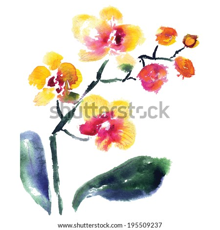 yellow orchid isolated on white, vector - stock vector