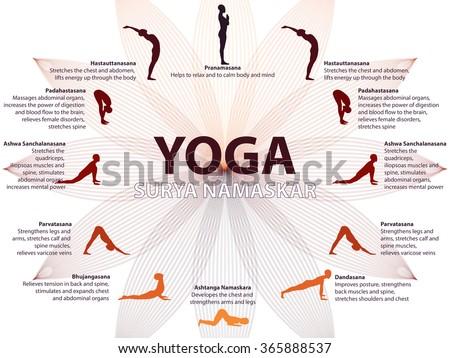 Yoga infographics, Surya Namaskar sequence, Salutation to the Sun, benefits of practice - stock vector