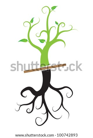 Young plant with root, vector - stock vector