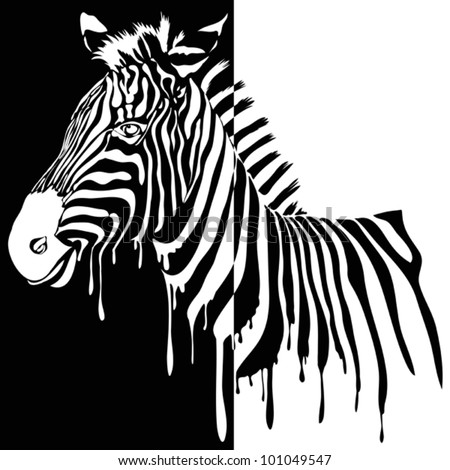 Zebra vector black and white. Abstract safari animal design with stripes made from paint smudges - stock vector