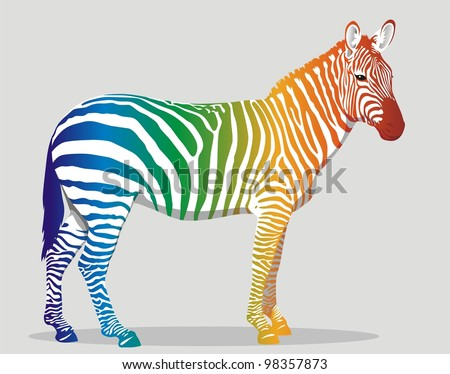 Zebra with multi-colored strips on a body - stock vector