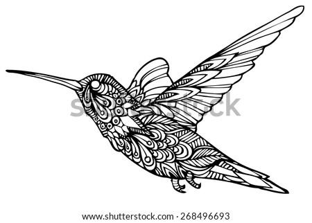 Zentangle style humming bird  - stock vector