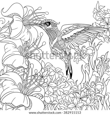 Zentangle stylized cartoon hummingbird flying around flowers full of nectar. Sketch for adult antistress coloring page. Hand drawn doodle, zentangle, floral design elements for coloring book. - stock vector