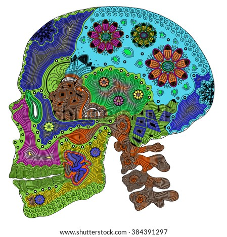 Zentangle stylized color human skull. Hand Drawn vector illustration. Books or tattoos with high details isolated on white background. Psychedelic. - stock vector
